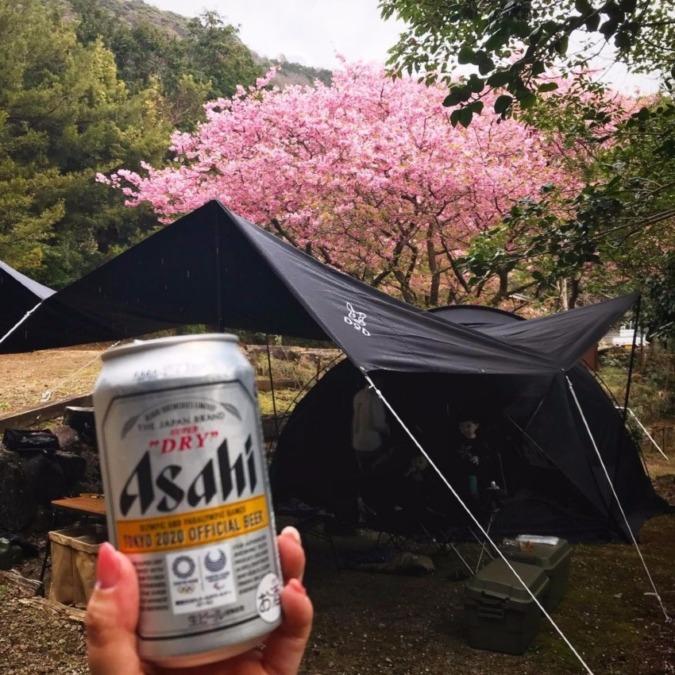 【キャンプ場レポ】伊豆キャンパーズヴィレッジでお花見キャンプ!